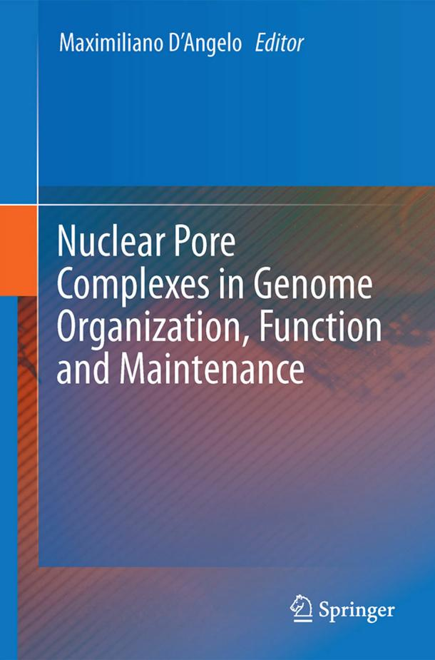 Nuclear Pore Complexes in Genome Organization, Function and Maintenance