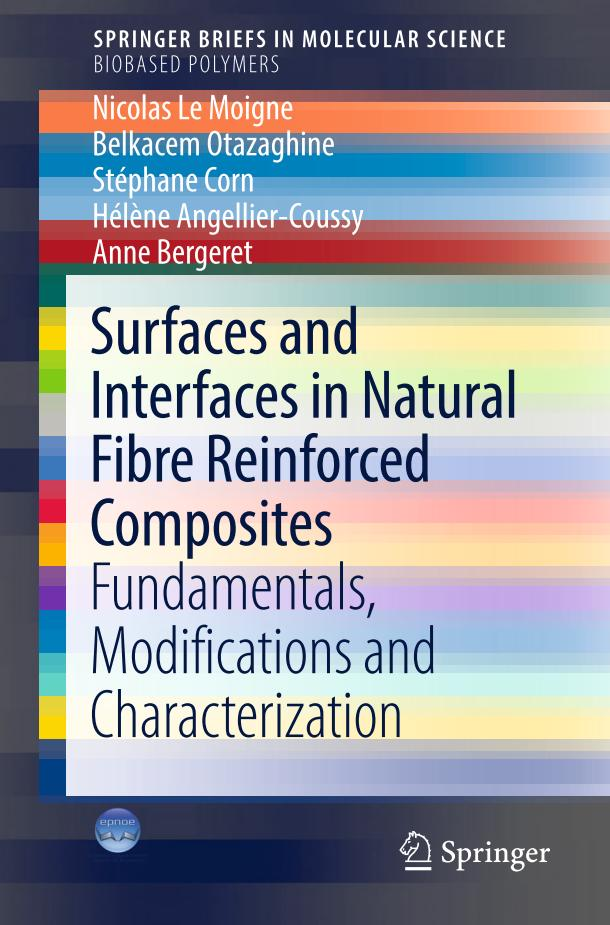 Surfaces and Interfaces in Natural Fibre Reinforced Composites – Fundamentals, Modifications and Characterization