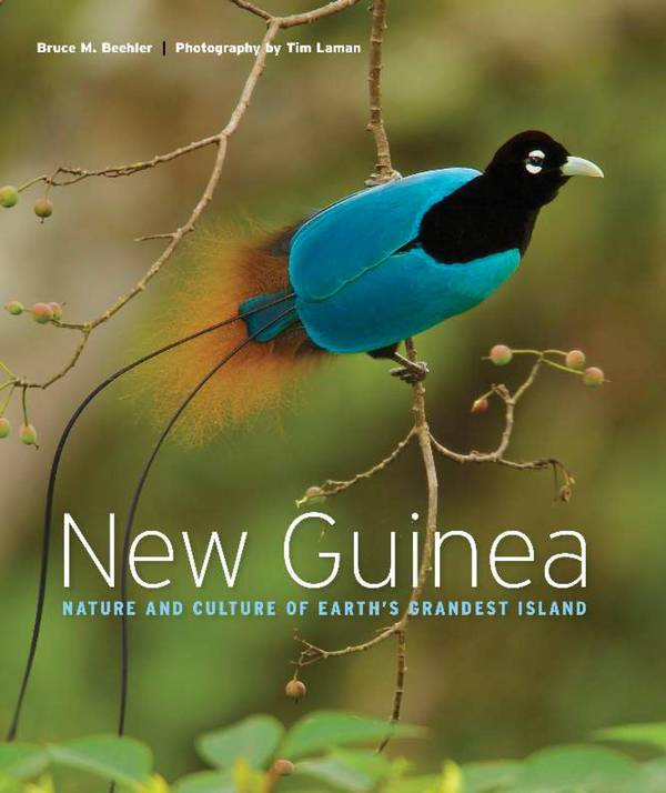 New Guinea – Nature and Culture of Earth's Grandest Island